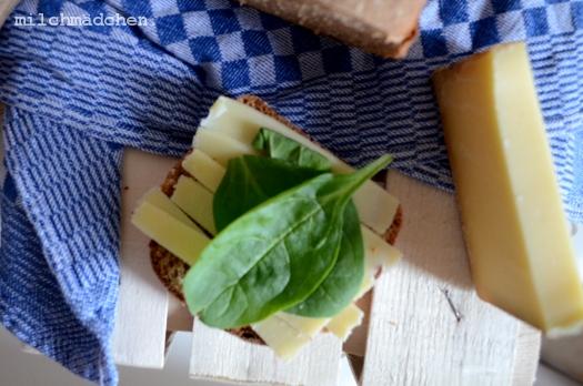 Die Entdeckung der Avocado oder: Roggenvollkorn-Sandwichbrot mit Avocado-Senf-Creme und Käse